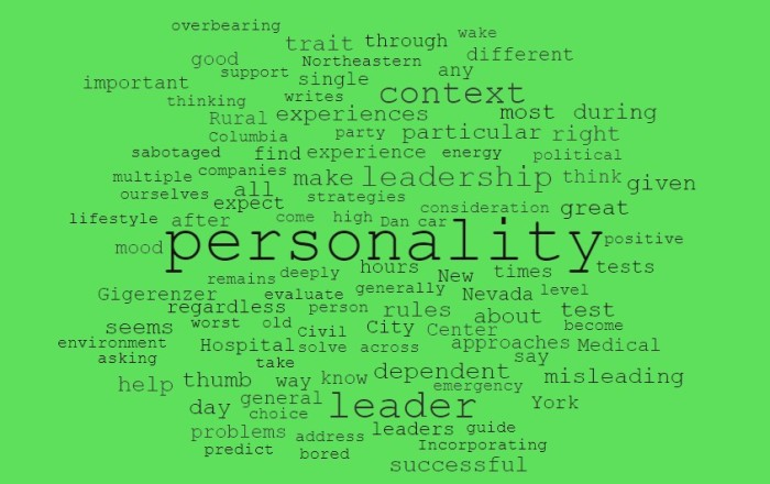 A Leadership Personality