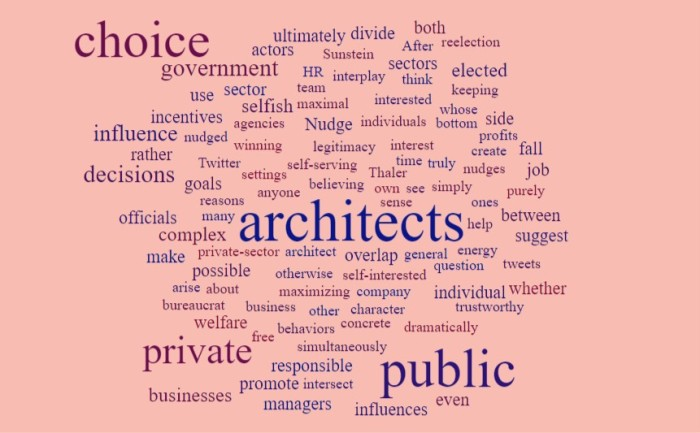 Public vs Private Choice Architects - Joe Abittan