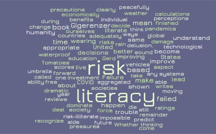 Risk Literacy - Joe Abittan