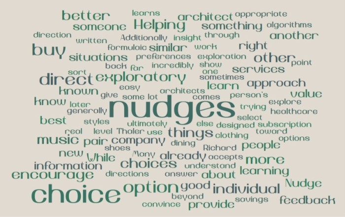 Learning and Exploratory Nudges - Joe Abittan