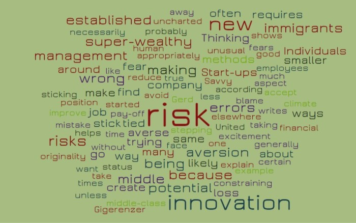Risk and Innovation - Joe Abittan