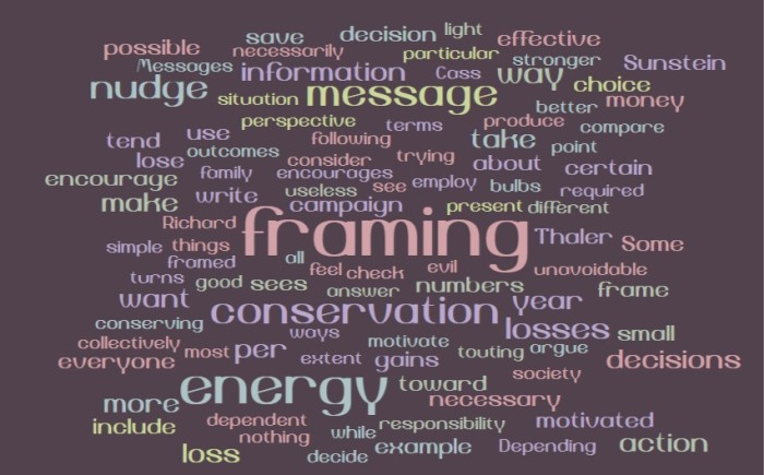 Framing and Nudges