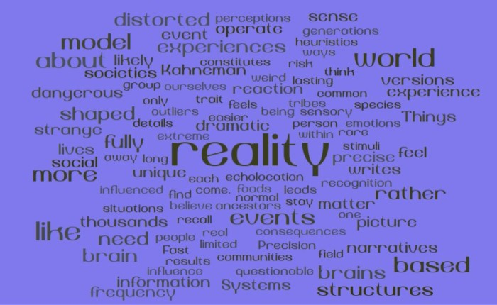 The Emotional Replica of Reality in our Brains