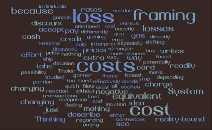 Framing Costs and Losses - Joe Abittan