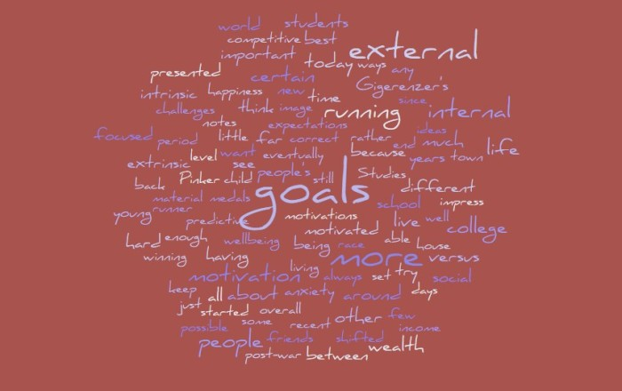 External Versus Internal Goals