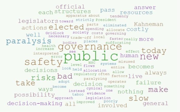The precautionary principle in governance