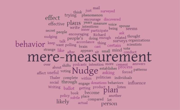 The Mere Measurement Effect - Joe Abittan