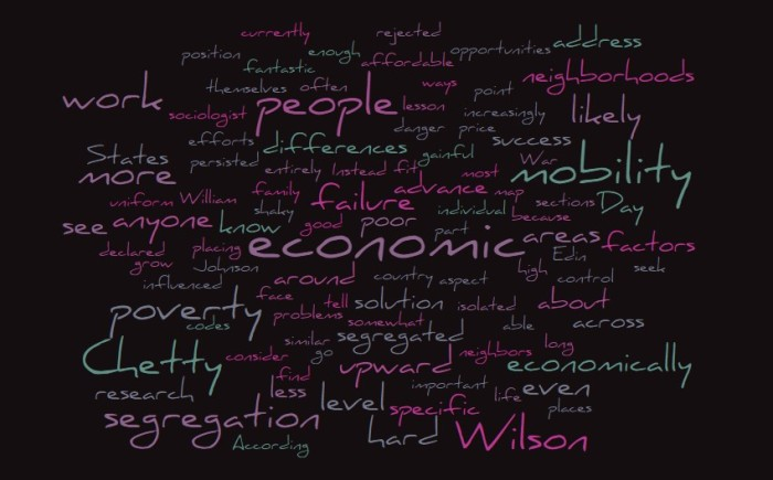 Economic Segregation and Poverty