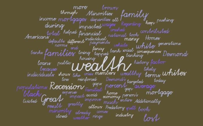 Losing Wealth - Matthew Desmond Evicted