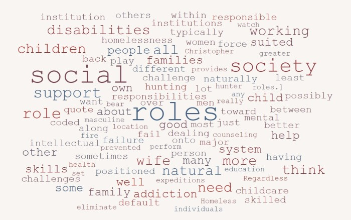 On Social Roles