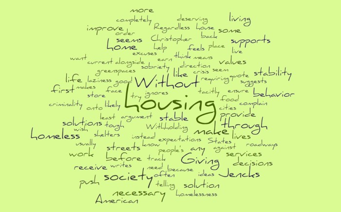Housing First Solutions