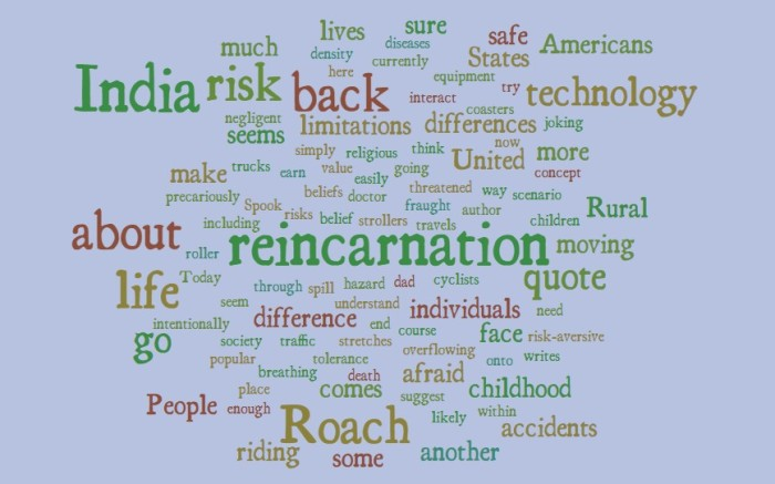 Mary Roach on Reincarnation in India