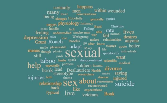 Injured Veterans, Sex, Divorce, and Suicide