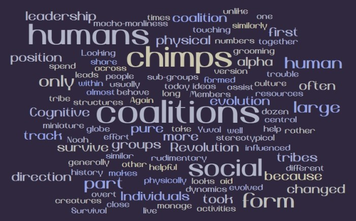 Chimps and Coalitions